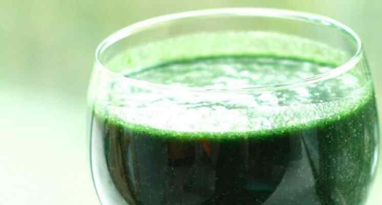 alga-spirulina-nutricion
