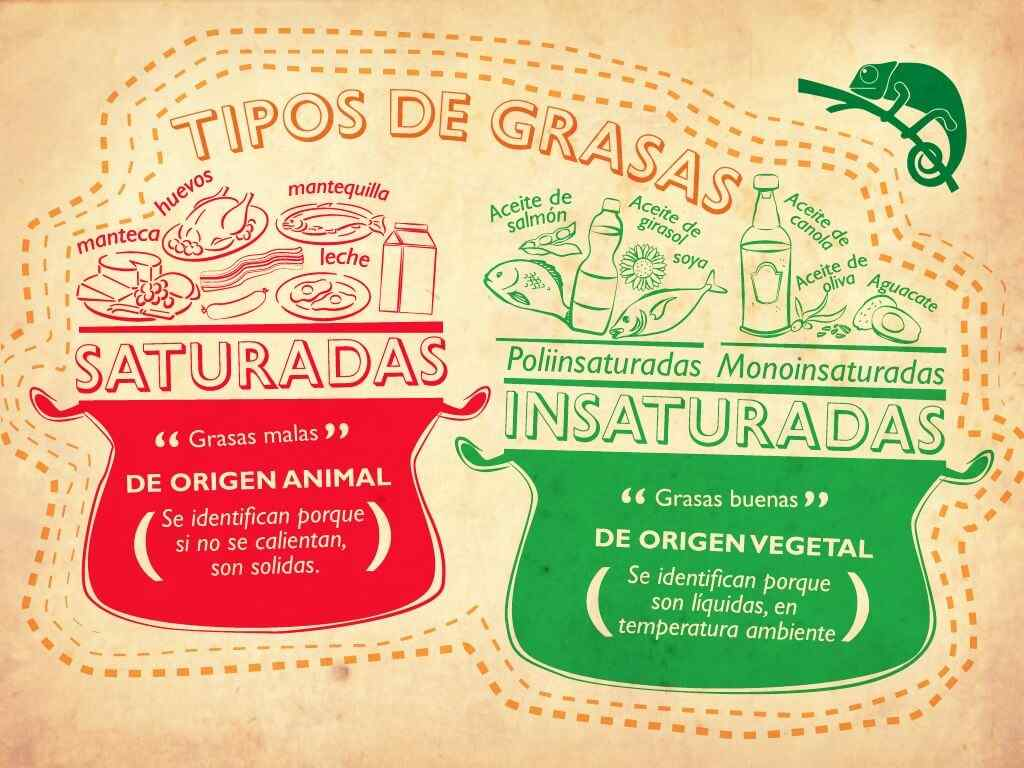 grasas saturadas vs grasas insaturadas