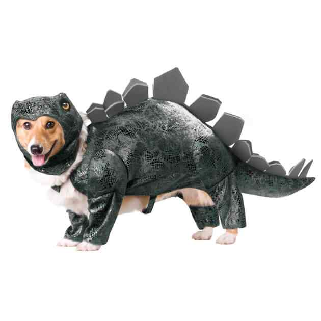 Disfraces-de-halloween-para-perros-3