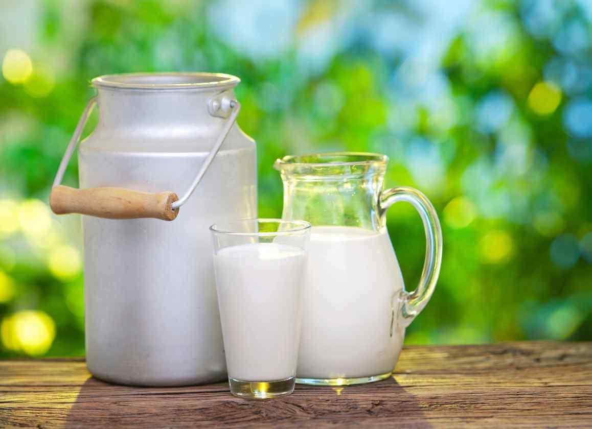 compresas de leche