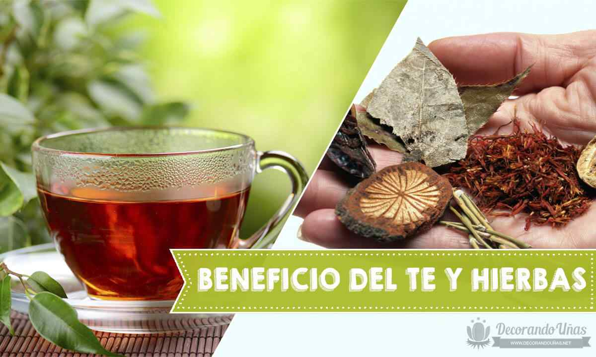 Beneficios y propiedades de los te y  hierbas