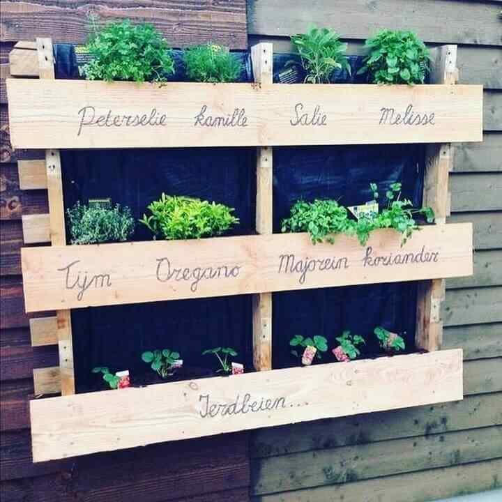 jardin vertical para especias con palet