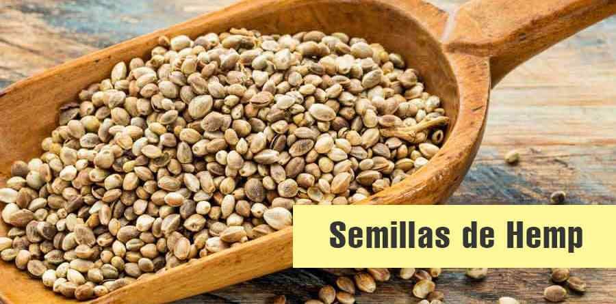 semillas-de-hemp-propiedades