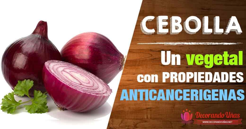 La cebolla es un vegetal que posee propiedades anticancerigenas