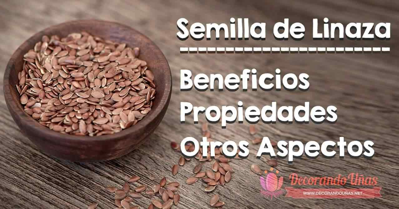 Propiedades de la linaza: Anota esta semilla para tu dieta 1